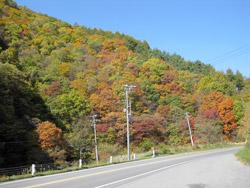 菅平高原の秋1