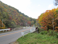 菅平高原の秋4