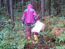 小雨の中でのキノコ狩りになりました