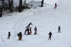 菅平高原でスキーを楽しむ